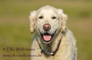 elke-wellermann-de1_