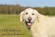 elke-wellermann-de32