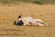 www-elke-wellermann-de13