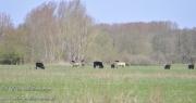 www.elke-wellermann.de