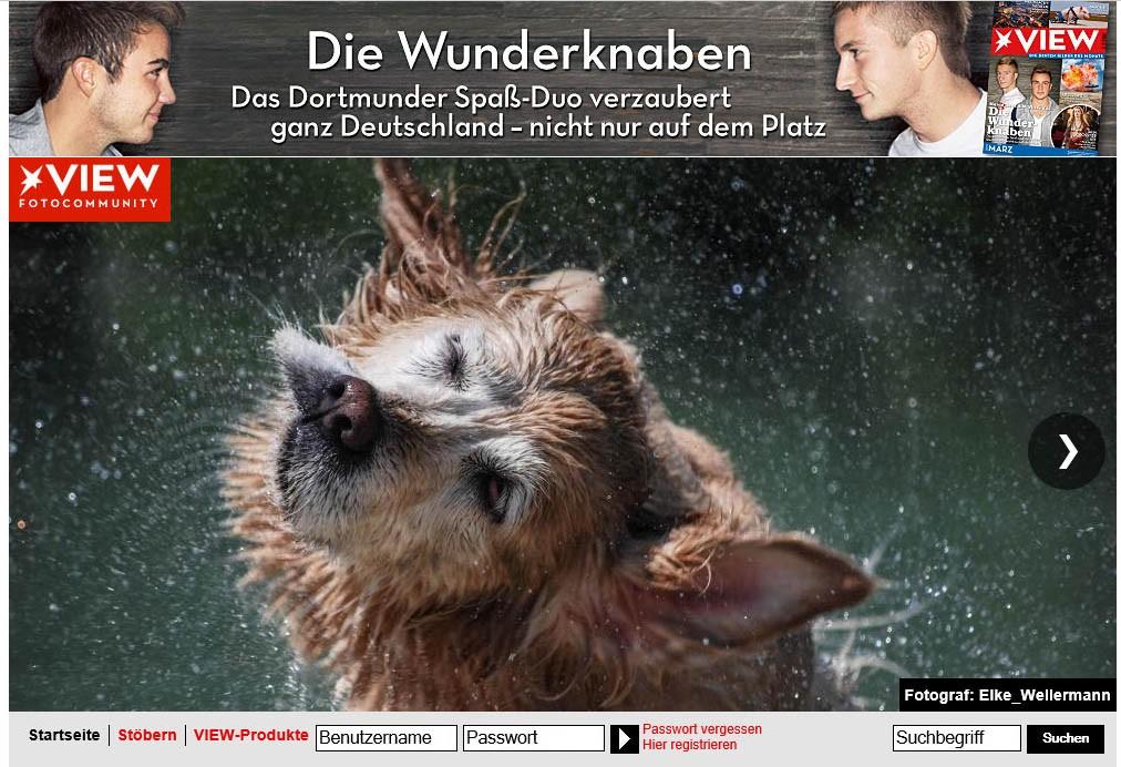 www.elke-wellermann.de0116.jpg