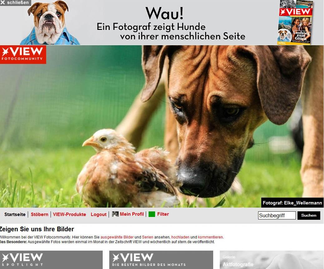 www.elke-wellermann.de01.jpg